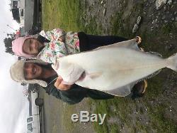Alaska Halibut / Salmon Flyout fishing trip with Lodging, 6 nights and 4 charters